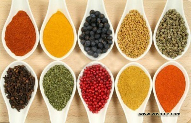 spice herb agro products 6