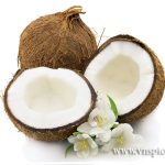 coconut Thanh Hien
