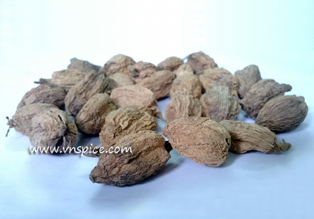 Inmatured Black cardamon (1)